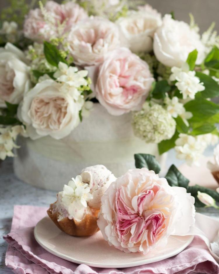 Blush Roses for Floral Afternoon Tea Party