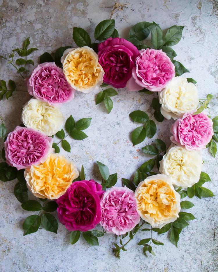 Mixed David Austin Roses Summer Wreath Design