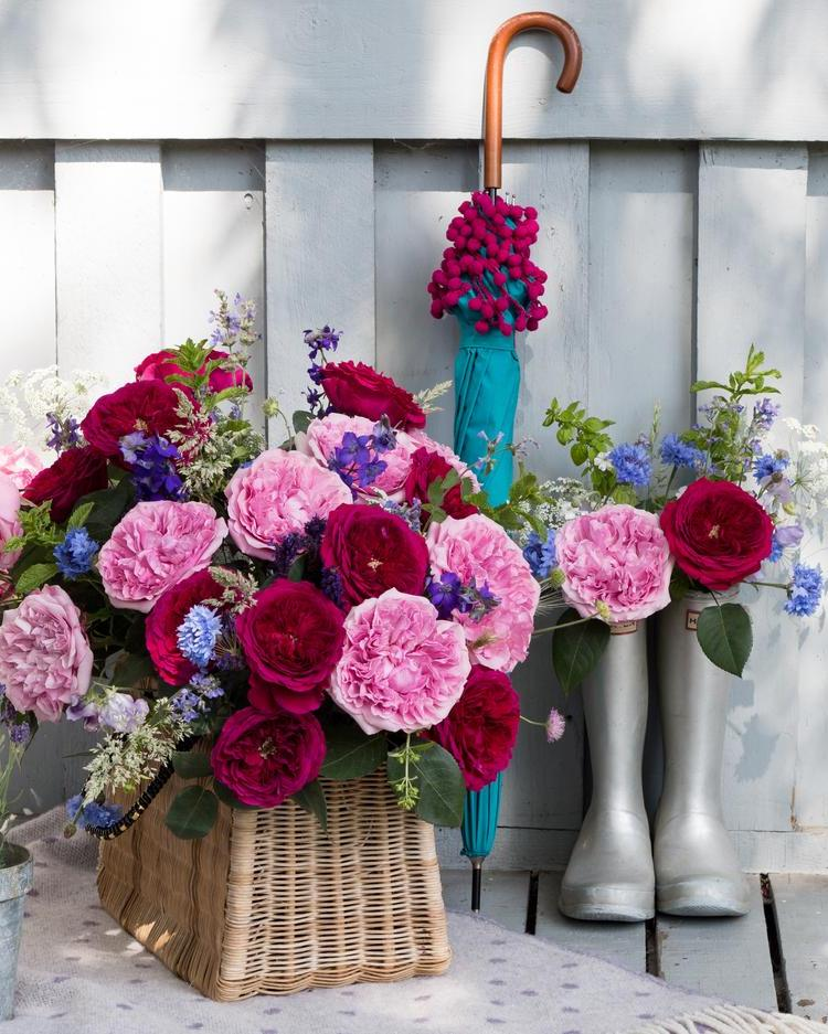 Miranda and Darcey Roses Mixed in a Basket for Summer Outdoors Gifting