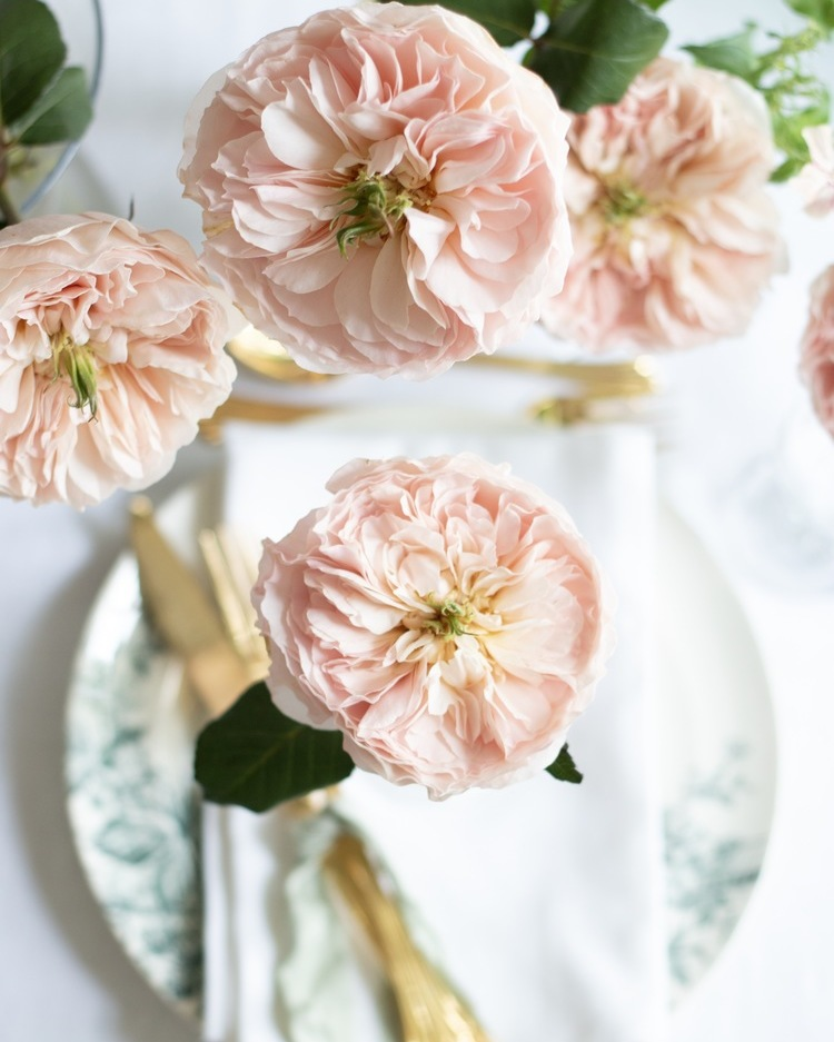 Charity Blush Roses for Luxury Indoor Wedding Party