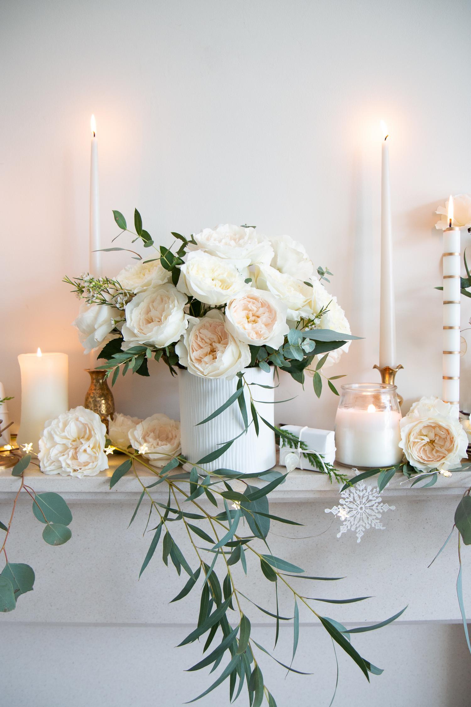 ホワイトクリスマスのための純度と忍耐のバラ