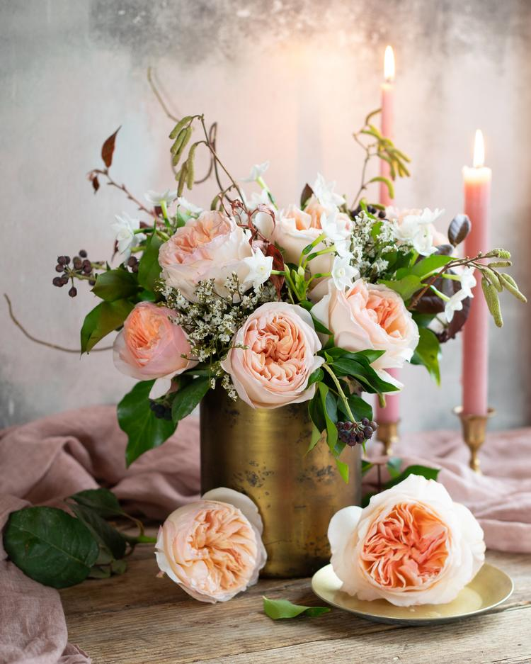 Juliet Peach Roses for Valentines Day Gifting