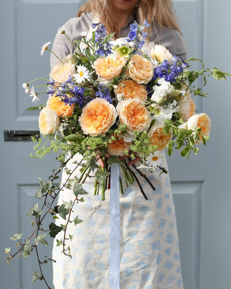 Beatrice Roses Hand Tied Bouquet for Spring