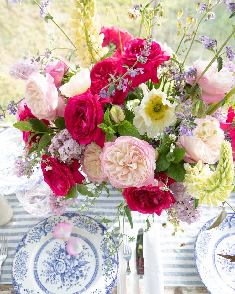 David Austin Roses for small weddings