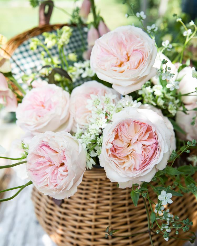 Basket of David Austin Roses with Keira
