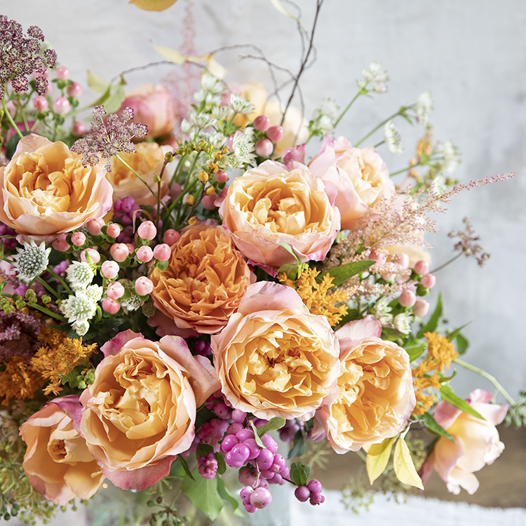 Edith roses close up blooms bouquet