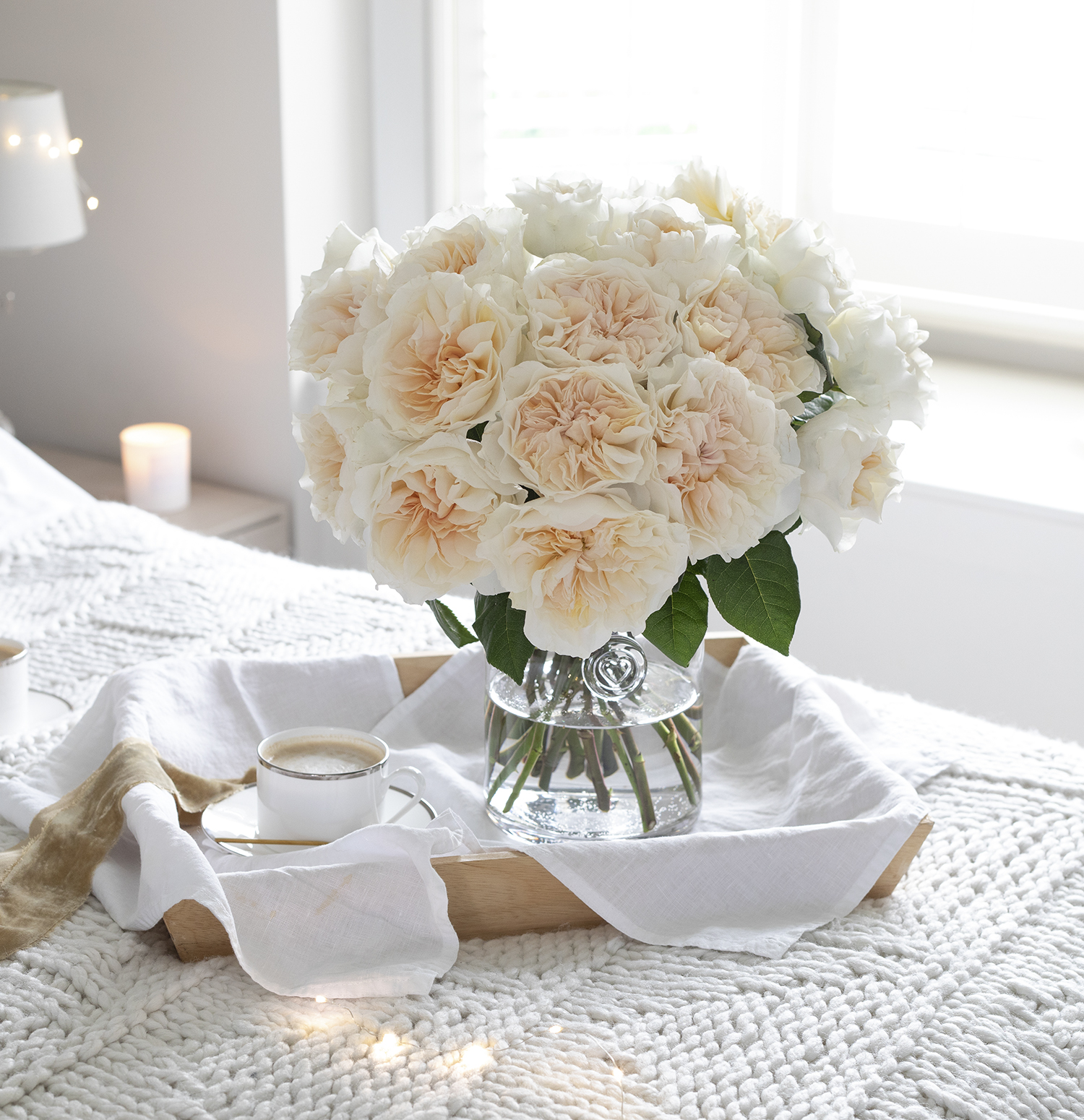 Eugenie Rose David Austin Valentine Roses Breakfast in bed