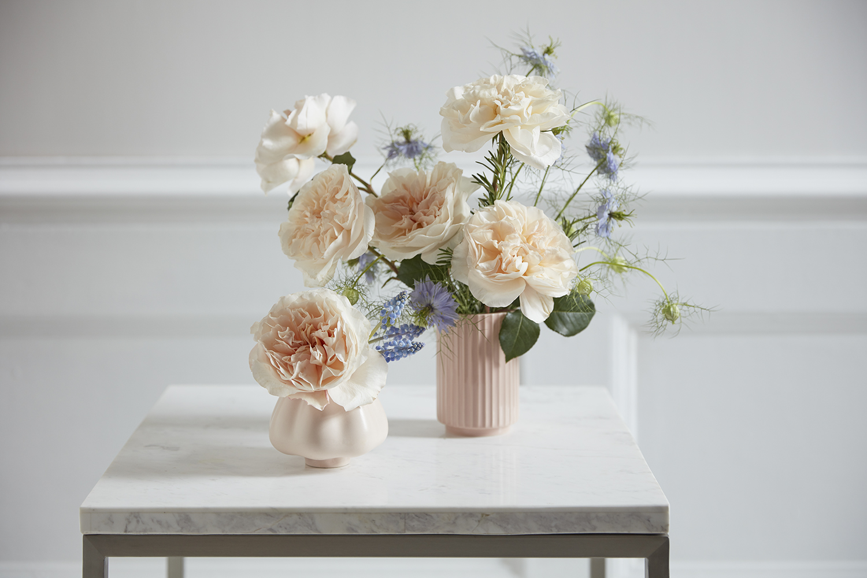 Eugenie rose David Austin small vase arrangement