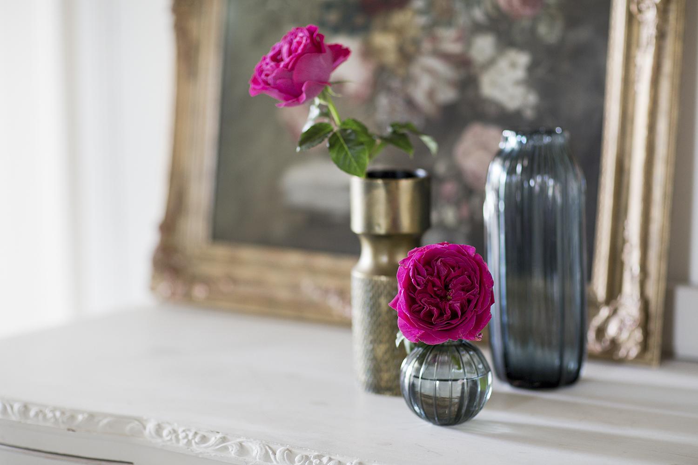 Kate Rose David Austin Single Blooms in Bud Vase and Brass Vase