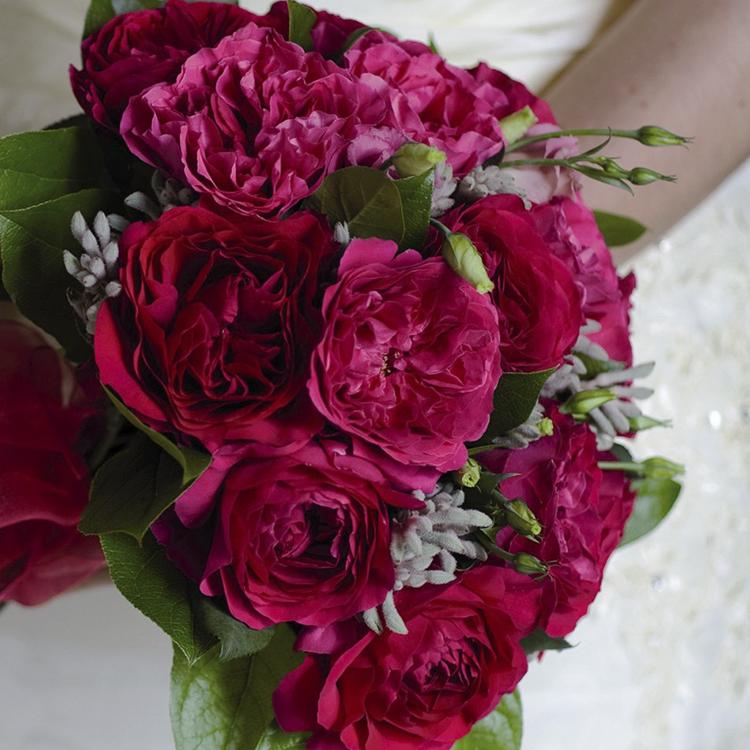 Kate Rose David Austin Cottage Garden Wedding Bouquet