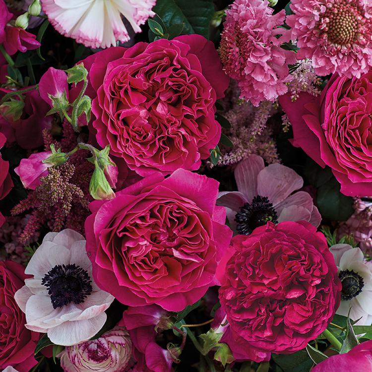 Kate Rose David Austin With Anemone Wedding Bouquet