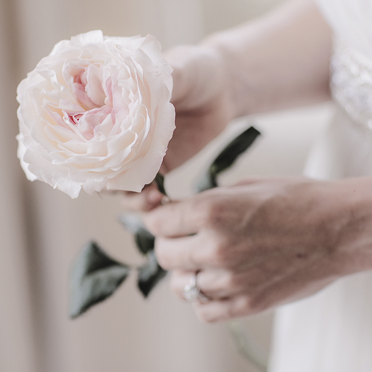 Keira Rose David Austin Single Stem in Brides Hand
