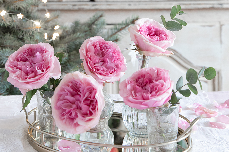 Miranda pink roses on mirrored tray