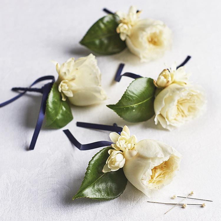 Patience cream roses buttonholes