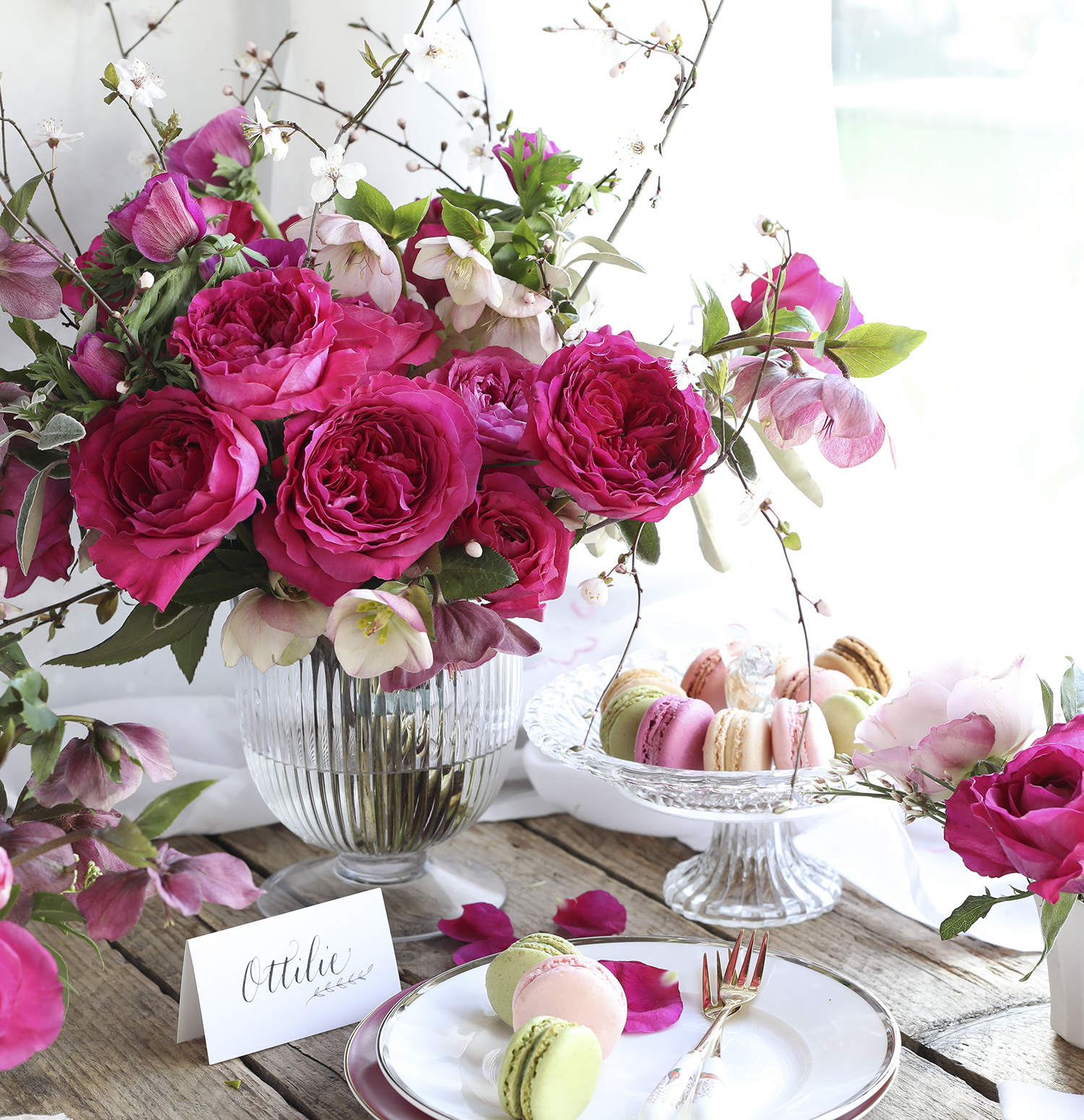 Rosas de capacidad rosa para regalar ideas de celebración
