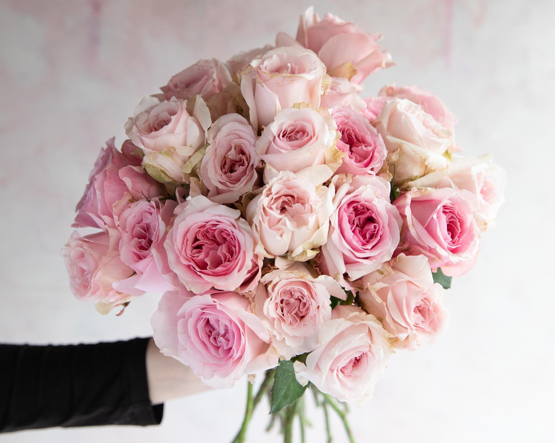 Pink Miranda Roses Gift Ideas