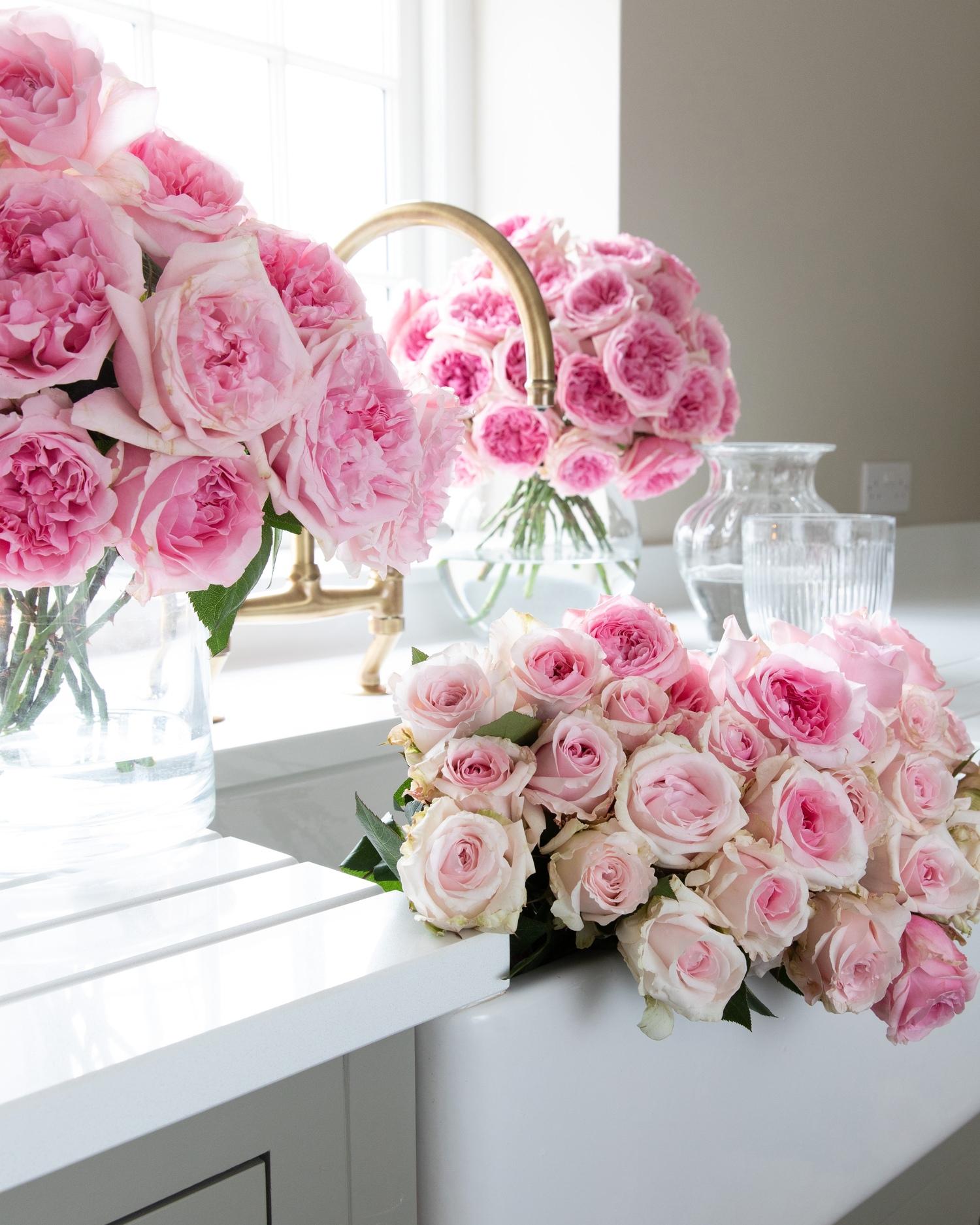 Miranda Pink Roses for Home Arrangements